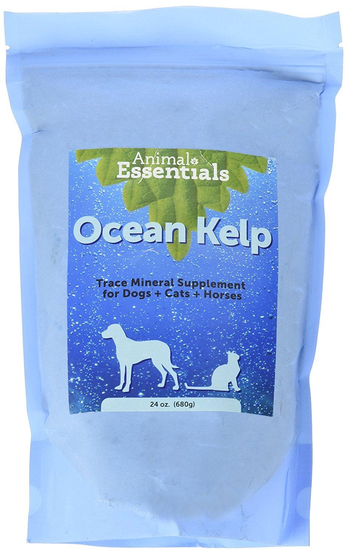 Animal Essentials Organic Ocean Kelp (24 oz)