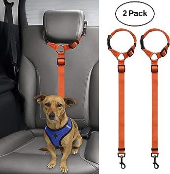 Bwogue 2 Paquetes de cinturón de Seguridad para Perro, Gato ...