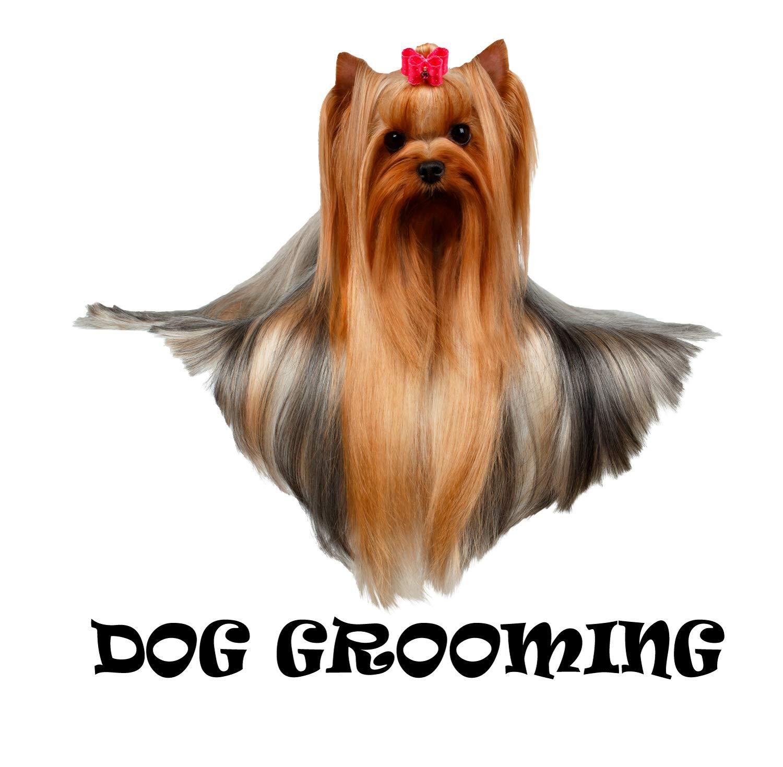 Amazon.com: Dog Grooming Wall Decal, Dog Grooming Vinyl ...