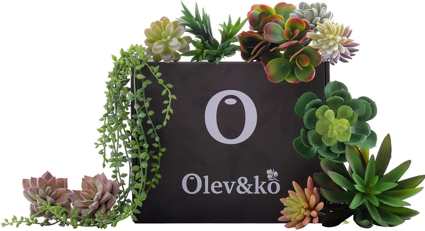 Olev&ko Realistic Looking Faux Succulents (Plantas Artificiales Decorativas) 13 -Piece Variety of unpotted Cactus Greenery for Indoor/Outdoor Arrangements for Your Home/Office, Kitchen Shelf Decor