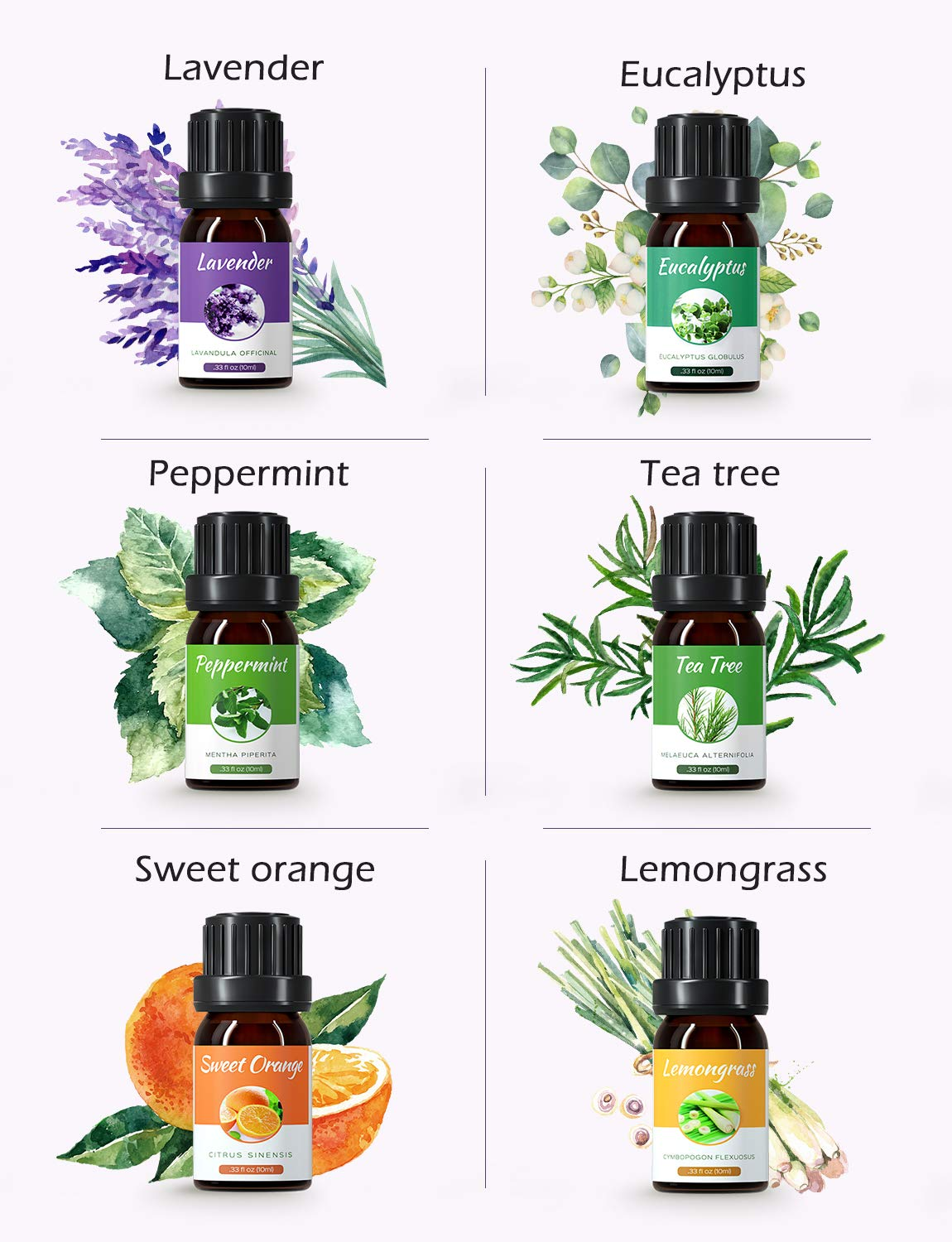 Homasy Essential Oils Set, Top 6x10mL Essential Oils Gift Set, Aromatherapy Essential Oil for Diffuser, Humidifier, Skin Use, Hair Care, DIY, etc