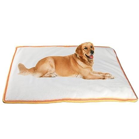 Cama para mascota, de espuma, para perros o gatos, suave algodón