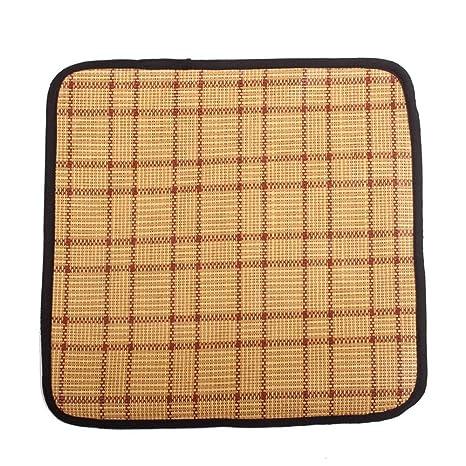 BIAOZH Almohadilla de algodón para mascotas de doble uso, almohadilla de refrigeración para cama de bambú para verano e invierno, S M L XL azul ...