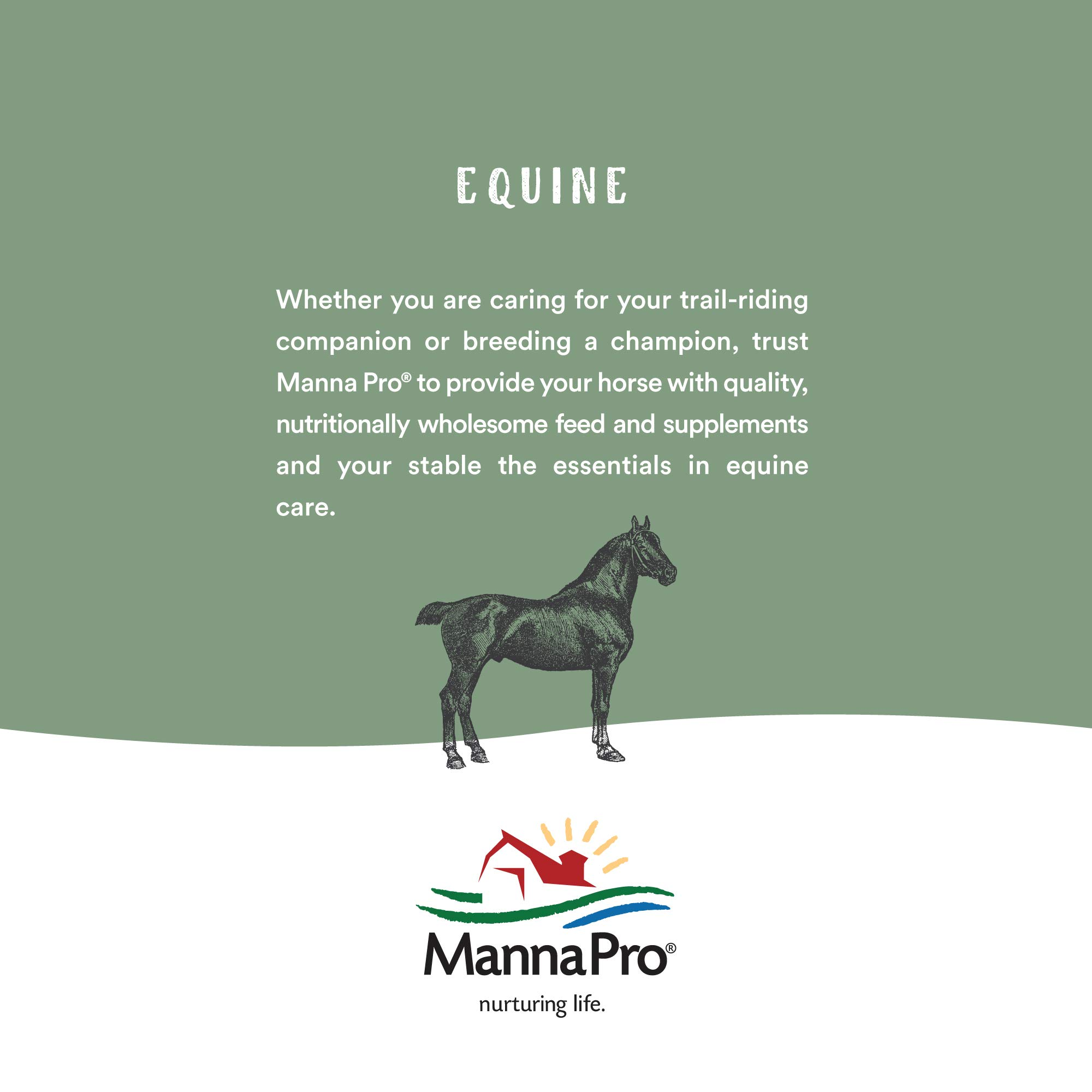 Manna Pro Insect Shield Opti-Force Fly Mask Standard by Manna Pro