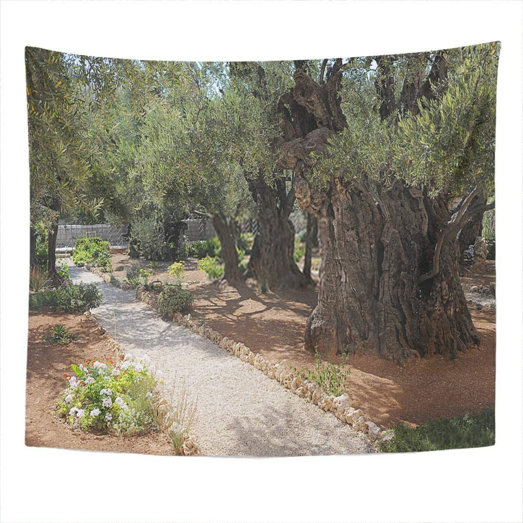 Houlor Tapestry Big Tree Spring Autumn Stylish Retro Enjoyable Garden Gethsemane Jerusalem Wall Hanging Art Print Home Polyester Decoration Apartment Bedroom Living Room 50x60 Inches