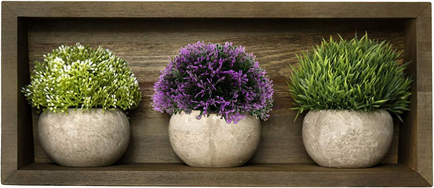 Small Indoor Artificial Plant Succulents in Grey Pots & Floating Wall Shelf for Home Decor - Mini Succulant Plants & Decorative Shelf - Farmhouse Coffee Table Décor Gift Set in Brown Wood by OHH!