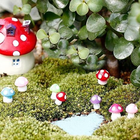 rycnet - Miniatura de Hongos con micropaisaje Bonsai, Plantas suculentas, decoración de jardín,, M: Amazon.es: Hogar