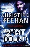 Spirit Bound: Number 2 in series