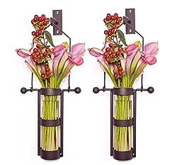 Danya B. Wall Mount Hanging Glass Cylinder Vase Set with Metal Cradle and Hook