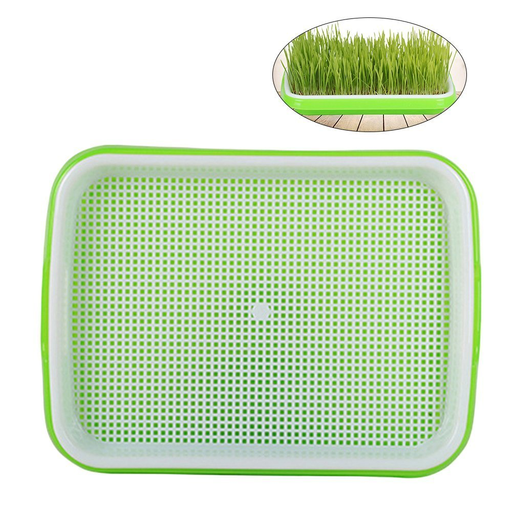 BESTOMZ Seed Sprouter Tray Soil-Free Food Grade PP Healthy Wheatgrass Grower