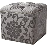Jennifer Taylor Home Natalia Collection Modern Hand Tufted and Nailhead Trim Living Room Lifted Storage Ottoman, Gray