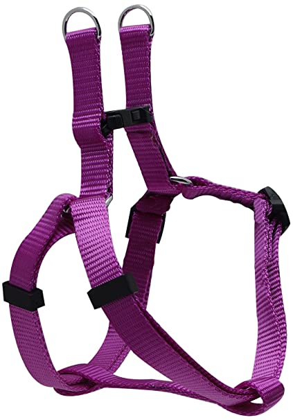 Amazon.com : Dogit Adjustable Step-In Dog Harness, X-Small, Purple