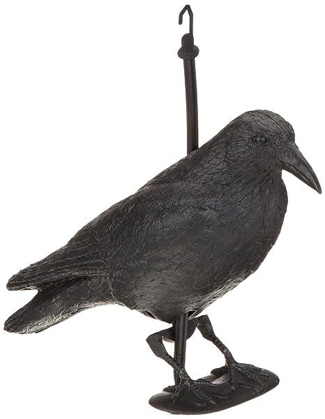 BREMA Corvo da giardino, nero, 38 cm: Amazon.it: Giardino e giardinaggio
