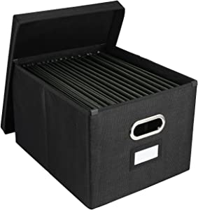 EasyPAG Collapsible File Storage Box with Lid Desk Filing Organizer Bins with Inner Metal Brackets for Letter and Legal Size Hanging File Folder ,2 Pack,Black