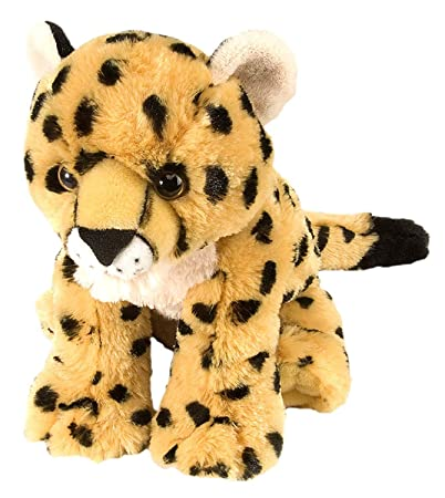 E-Chariot Soft Toys Cheetah Baby Plush Stuffed Animal Cuddlekins by Wild Republic (10902) 12 Inches
