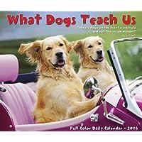 What Dogs Teach Us 2016 Daily Box Calendar