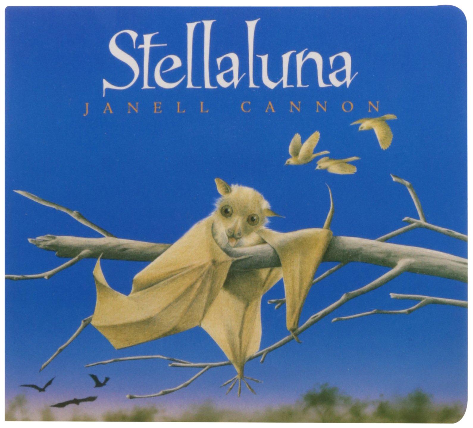 Image result for stellaluna