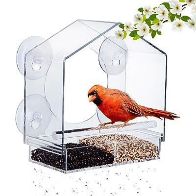 humming chook bird feeders