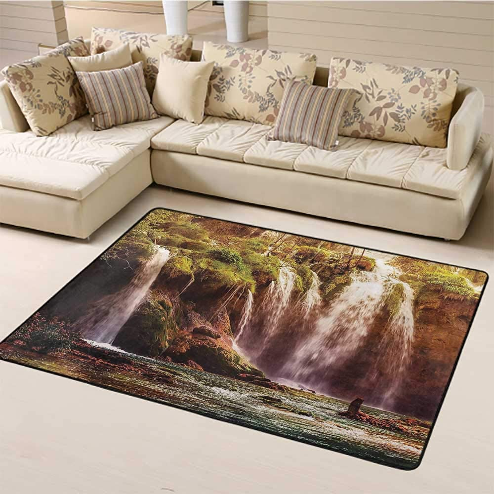 Large Carpet Mat Nature Decor Modern Indoor Rugs Waterfall Forest Tree Moss Lake Stones Rocks Wonder of The World Image for Entryway Living Room Bedroom Home Decor Green and Brown (4'7