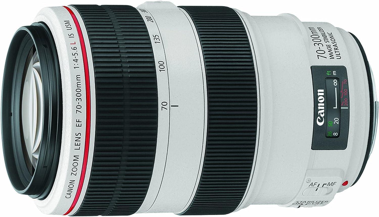 Canon Ef 70 300mm F 4 5 6l Is Usm Telezoom Objektiv Kamera