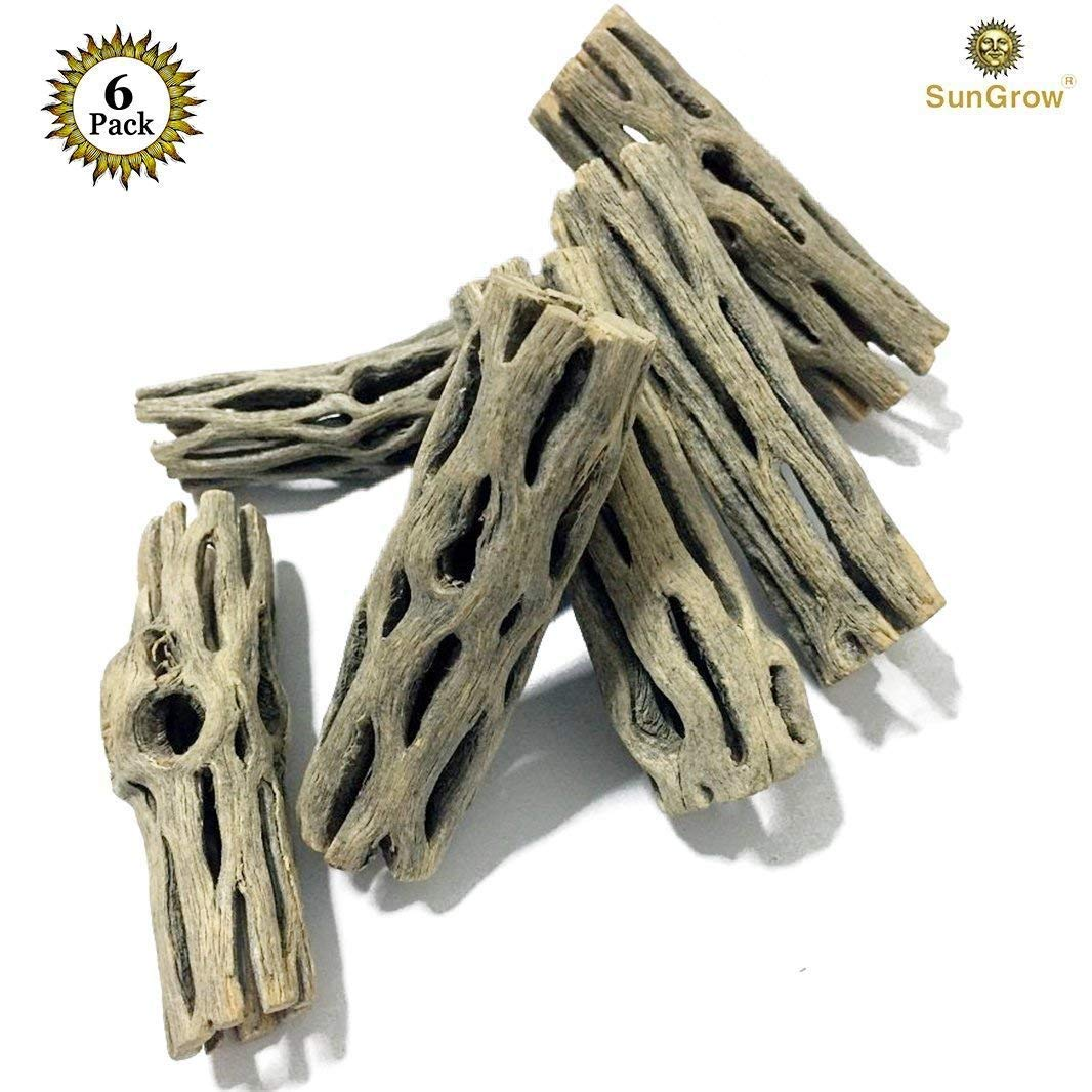 6-pcs Natural Cholla wood for Hamsters by SunGrow - 100% Organic soft wood, Non-Toxic, Pesticide-Free, Thorn-free - Chew toy for ferrets, guinea pigs, gerbils, mice, chinchillas - Perfect for climbing