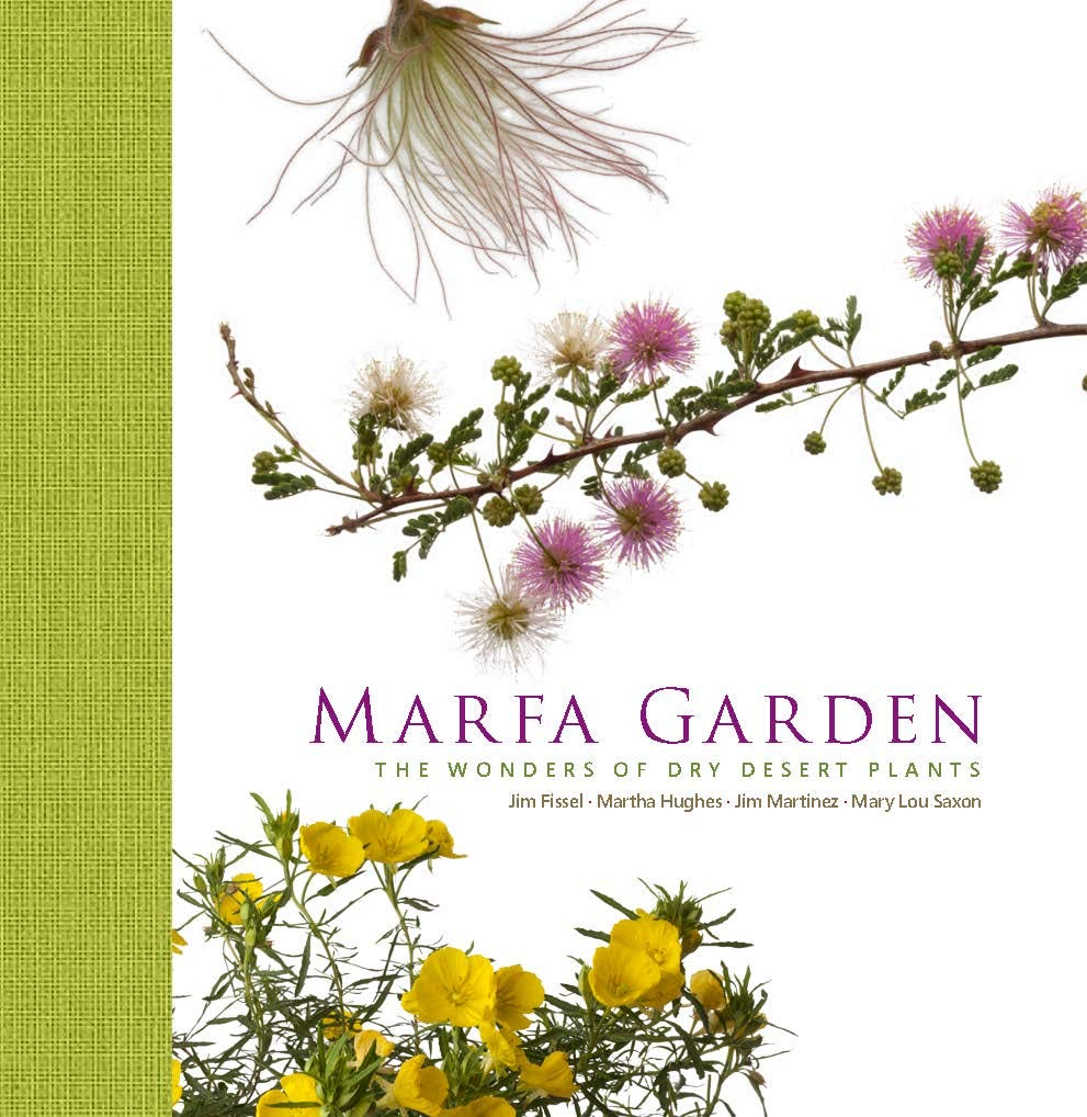 Marfa Garden The Wonders Of Dry Desert Plants Jim Martinez Mary