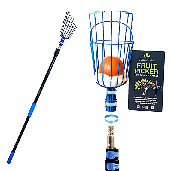 EVERSPROUT 19-Foot Fruit Picker (25 Foot Reach) | Preassembled, Easy-to-Attach Twist On Basket Design | Light-Weight, High-Grade Aluminum Extension Pole | +Bonus Fruit Carrying Bag (1)