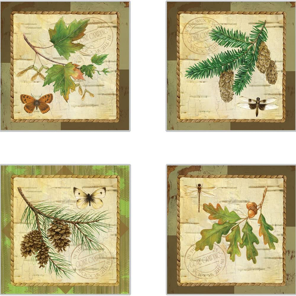 CoasterStone A Walk in The Woods Absorbent Coasters, 4-1/4-Inch, Set of 4