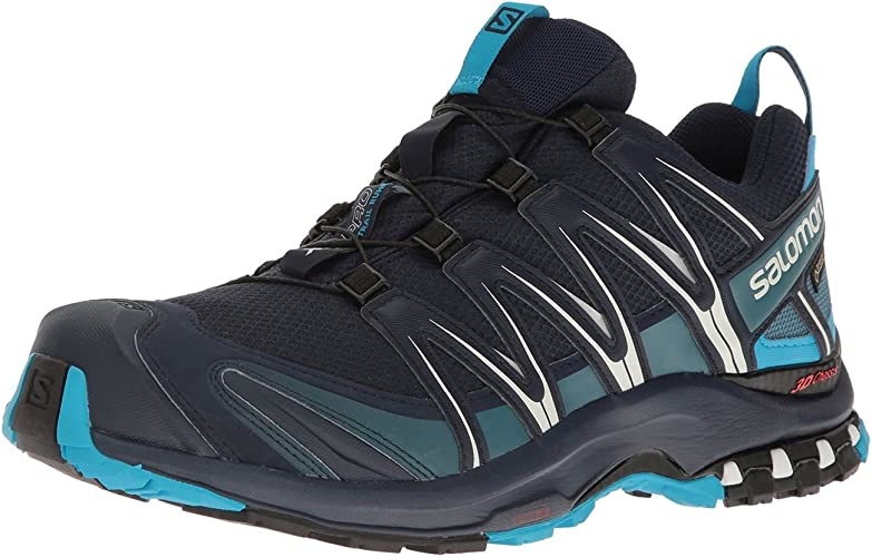 salomon xa pro 3d gtx mountain trail