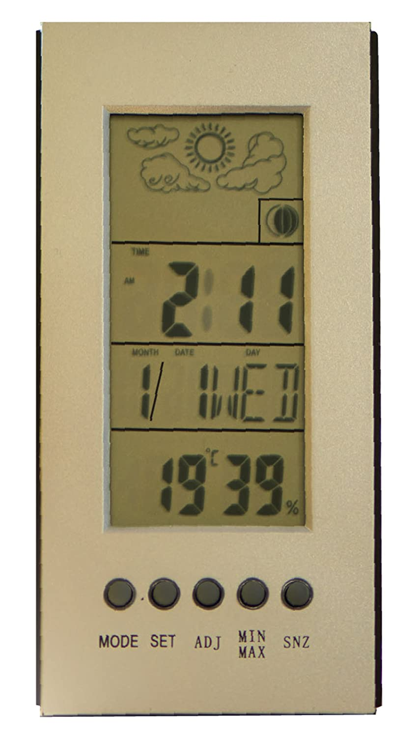 Briers Digital Weather Station