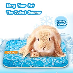 FLAdorepet Magical Guinea Pig Hamster Cooling Mat Pad Summer Small Animal Rabbit Chinchilla Cool Bed House Absorb Water