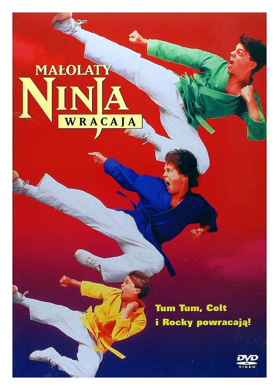 Amazon.com: 3 Ninjas Kick Back [DVD] (English audio. English ...
