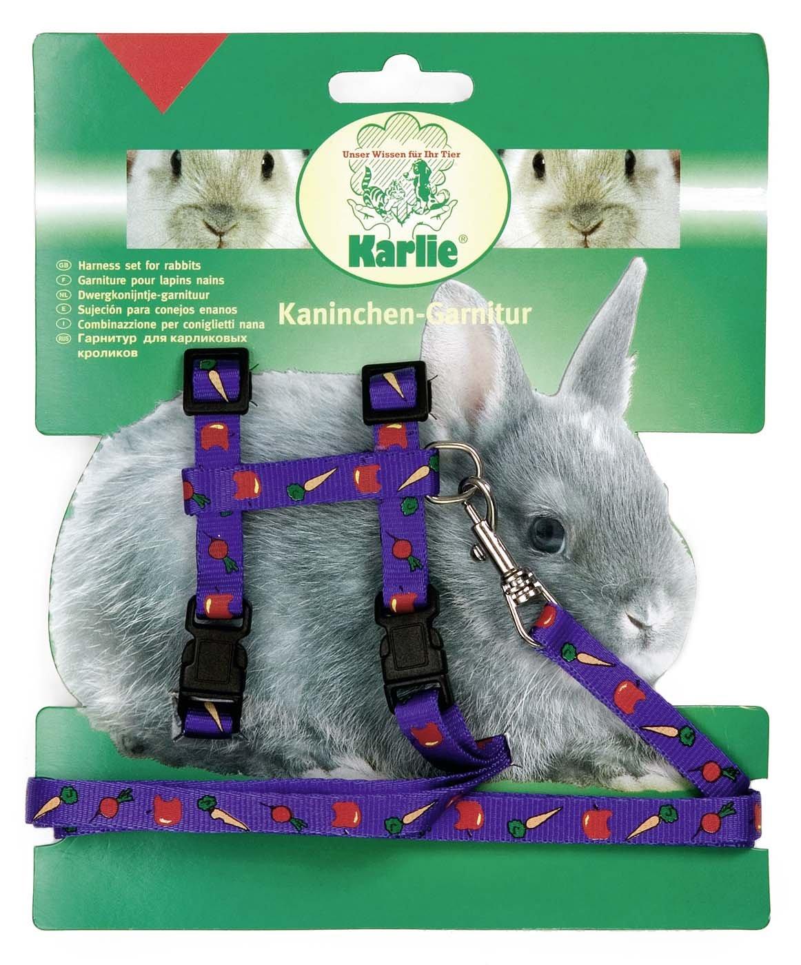 Karlie Geschirr Und Leine mit Motiv für Kaninchen, in 3 Farben KA86018