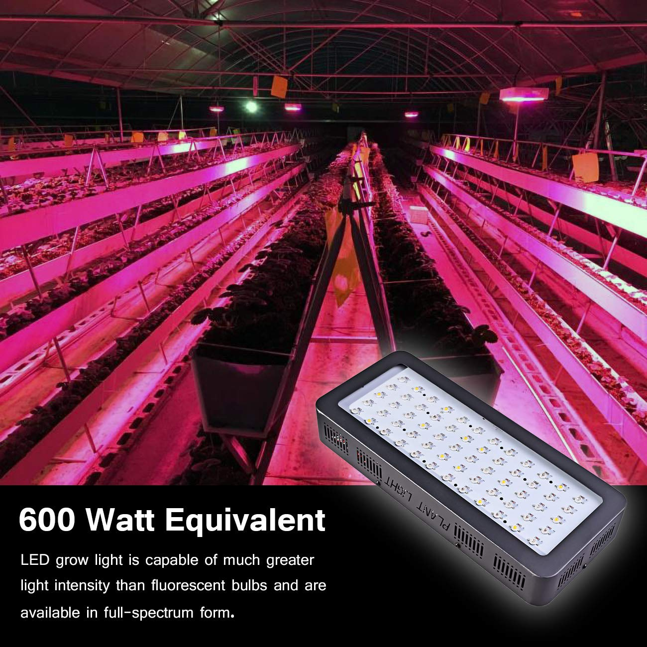 Golspark Indoor LED Grow Light, 600 Watt Full Spectrum Plant Light with Switch, IR&UV Growing Lamp Kits for Greenhouse Hydroponic Seedling Veg and Flower by Golspark (Image #8)