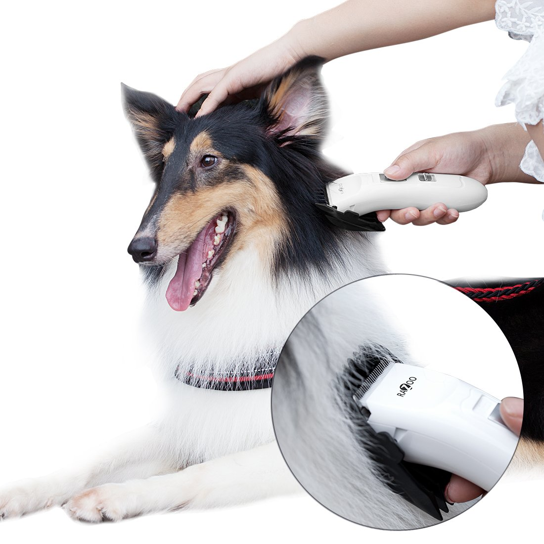 Razoo Cordless Dog Grooming Clipper – The Most Affordable Grooming Clipper