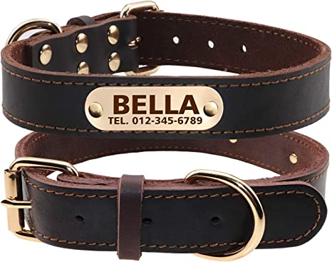 TagME Collar de Perro de Cuero Personalizado,Placa de ...