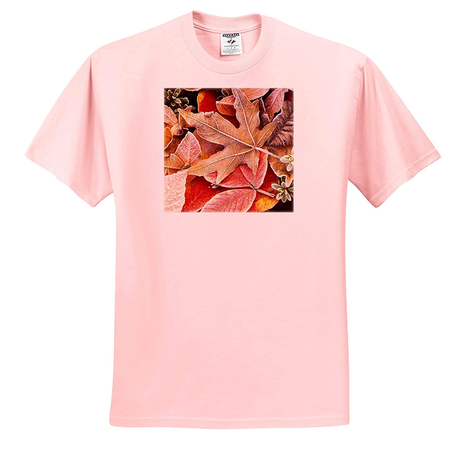 ts/_313925 Autumn Leaves on The Ground Covered in Frost - Adult T-Shirt XL Autumn 3dRose Danita Delimont