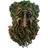 Treant Face Wall Plaque Large Garden, Greenman Decorative Garden Wall Plaque. 24cm