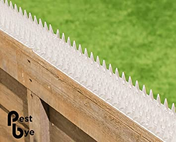 Anti Climb Clear Fence and Wall Spikes Pack of 8 (4M to 12M) by Primrose