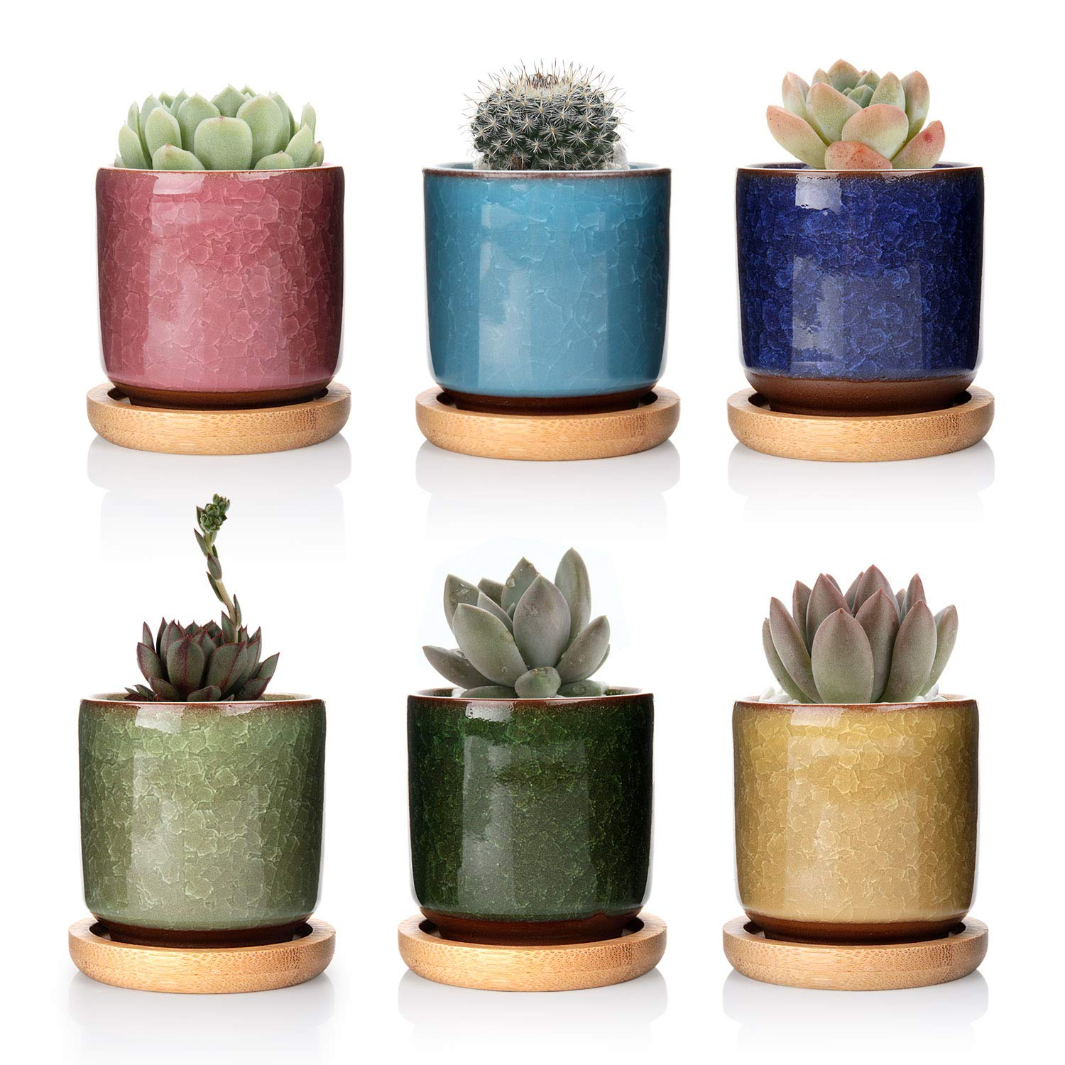T4U 2.5 Inch Ceramic Ice Crack Zisha Raised Serial Sucuulent Plant Pot Cactus Plant Pot Flower Pot Container Planter with Bamboo Trays Full Colors Package 1 Pack of 6