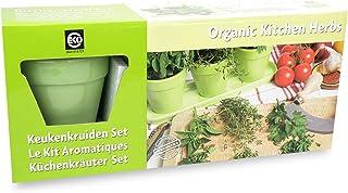 Bio Küchenkräuterset - lindgrünes Keramikset