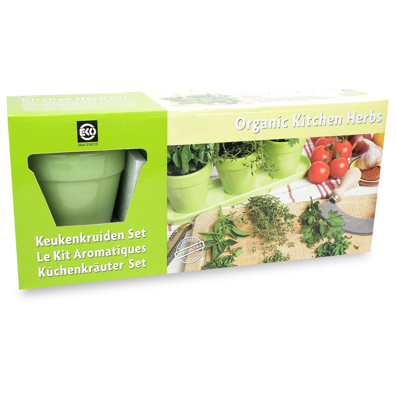 Bio Küchenkräuterset - lindgrünes Keramikset Tuin