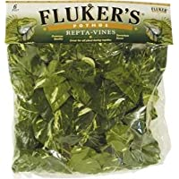 Repta Vines-Pothos for Reptiles and Amphibians (Pack of 1)