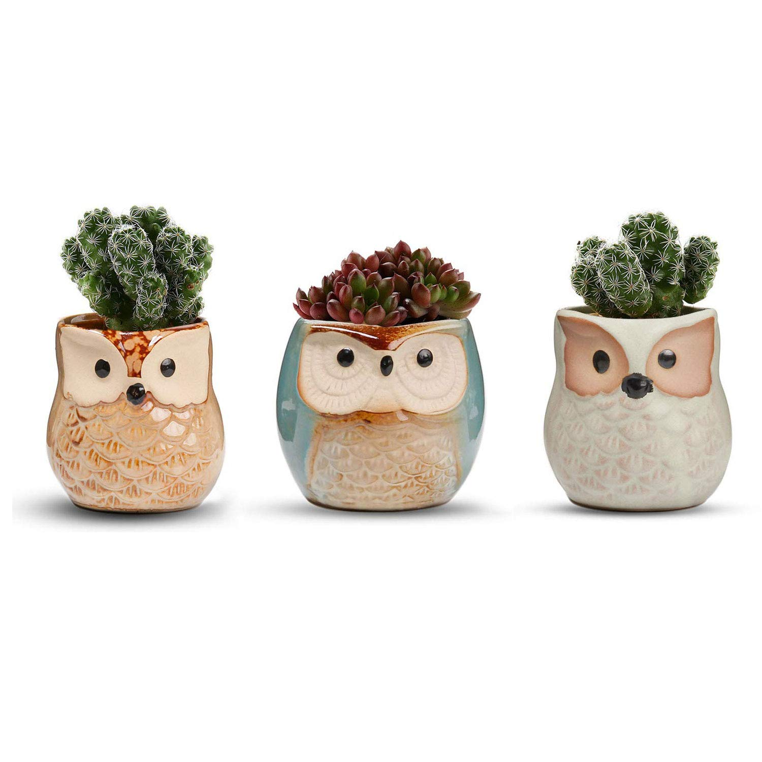 T4U 2.5 Inch Ceramic Succulent Planter Pots Mini Size, Cute Owl Bonsai Pots Home and Office Decoration Desktop Windowsill Gift,Perfect Gift for Gardener on The Birthday Set of 3