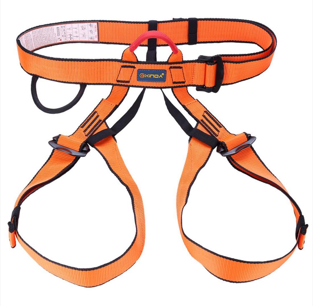 Arnés de escalada, cinturones Alisable seguro seguridad para ...
