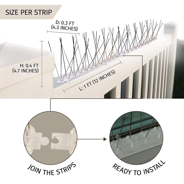 Amazon.com: Aspectek - picos de acero inoxidable de 10 pies ...
