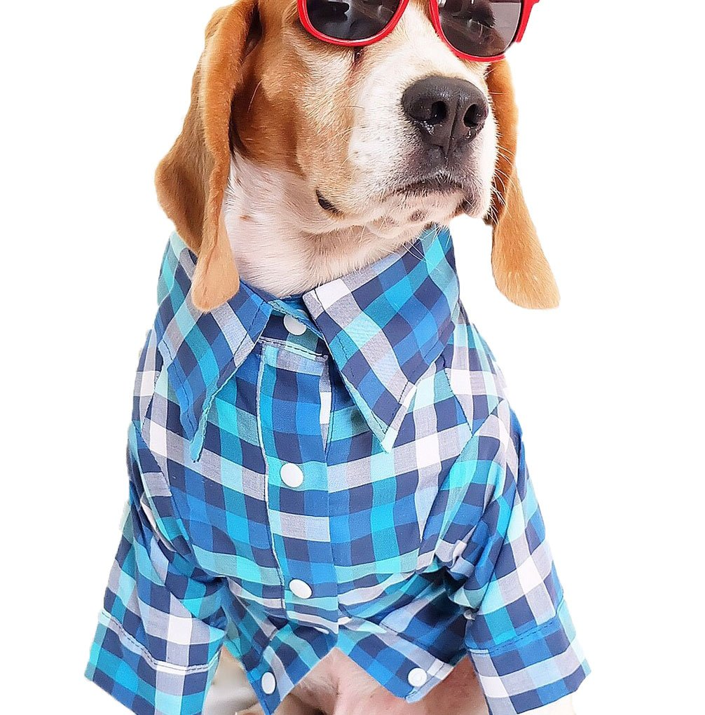 L Runncha Shop Cowboy Plaid colorful Dog Shirts, Small Dog,Large Dog T-Shirts,Pet Clothes,Dog Apparel Cat Shirts (L)