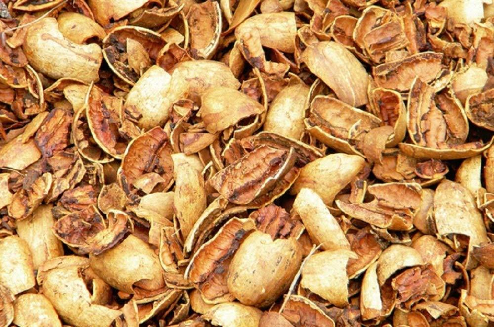 Pecan Shells   20 lb Box   Millican Pecan since 1888   San Saba, Texas