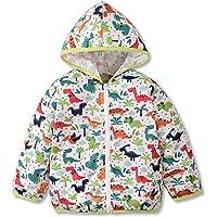 Chaqueta cortavientos para niño pequeño con capucha y dinosaurio, ligera, ropa de otoño y primavera