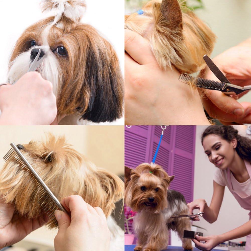 Oreja y Huella Juego de 5 Tijeras de Aseo para Mascotas de Acero Inoxidable para Cuerpo Completo Cara Tijeras de Perro con Punta Redonda Nariz